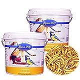 Lyra Pet® 2 x 5 L (Liter) Mehlwürmer getrocknet Fischfutter Nager Vögel im Eimer