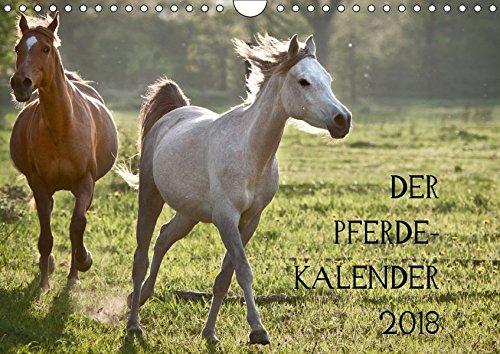 Pferdekalender (Wandkalender 2018 DIN A4 quer): wunderbare Pferde (Monatskalender, 14 Seiten ) (CALVENDO Tiere) [Kalender] [Apr 01, 2017] Zitzler, Hans