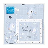 The Home Fusion Company 2 Sheets of Baby Boy Gift Wrap Wrapping Paper,Card & 2 Gift Tags Blue New Born
