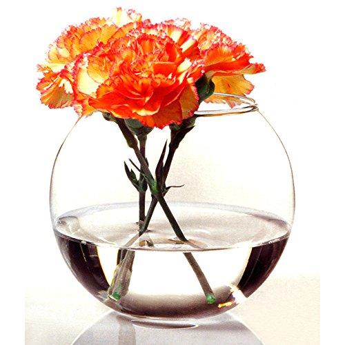 Pasabahce Botanica Round Flora Vase 6.25 inch(45068)