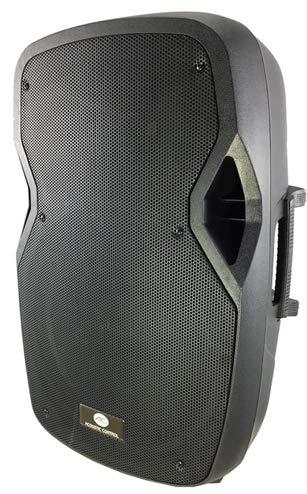 Acoustic Control AC12 AMP Altavoz Amplificado 12