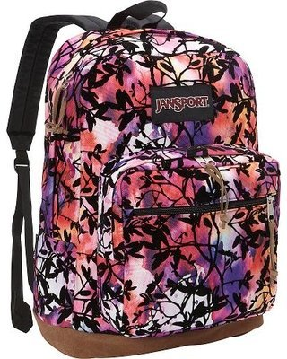 jansport-rechts-pack-expressions-multi-rainbow-rucksack-1900-cu-in