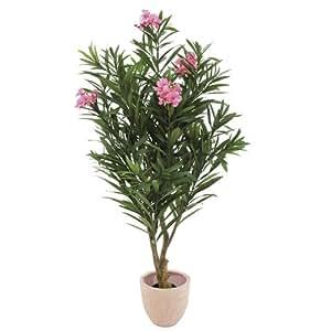 Europalms en laurier rose arbre 150 cm rose for Deco cuisine laurier