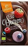 Landgarten Bio Bio Schoko Beeren Mix (1 x 50 gr)