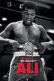empireposter 741653 Muhammad ali - Belt - Boxing Legende Sport Plakat Poster Plakat Druck, Papier, Bunt, 91.5 x 61 x 0.14 cm