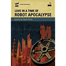 Love in a Time of Robot Apocalypse by David Perez (2011-04-15)