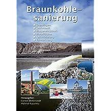Braunkohlesanierung: Grundlagen, Geotechnik, Wasserwirtschaft, Brachflächen, Rekultivierung, Vermarktung