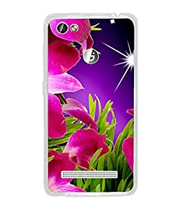 CRAZYMONK DIGITAL PRINTED BACK COVER FOR GIONEE F103 PRO