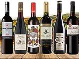 DAS Rotwein Geschenk | Kennenlern Paket Sortiment 6 Flaschen Super Rotweine | Spanien und Frankreich | Das 6er Wein Geschenkset für Geburtrtage oder als Dankeschön | inklusive Geschenknachricht | Rioja Syrah Cabernet Merlot etc. | spanische Weine französische Spitzenweine im Set |