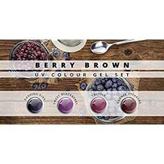 N&BF UV Farbgel Set | 4 x 5ml Colour Gel Berry Brown | Vier Beeren-Töne im Sparset | Colorgel mittelviskos | Made in EU | Nagelgel beerige Farben | Farbgel ohne Säure + selbstglättend für Nail Art