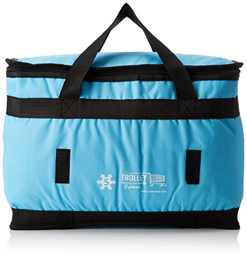 Trolley bags express ool, colore blu cielo