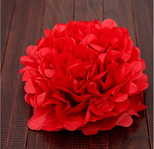FRE 10ST Pompons Seidenpapier Pom Pom Blumen Ball für Festival Hochzeit Geburtstag Party im freien Dekoration - - Rot-gewebe Im Freien
