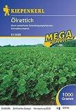 Ölrettich - 1 kg Gründünger Mega-Pack
