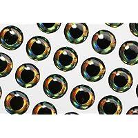 Tigofly 4 mm/10 mm 4D Ojos de pez Realista holográfico DIY Mosca Pesca cebos Hacer Ojos Artificiales Mosca Atar Materiales, 10mm 77pcs