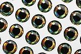 Tigofly 4mm/10mm 4D Fish Eyes realistico olografico Fly esche da pesca Baitfish fai da te artificiale occhi Fly Tying Materials, 10mm 77pcs
