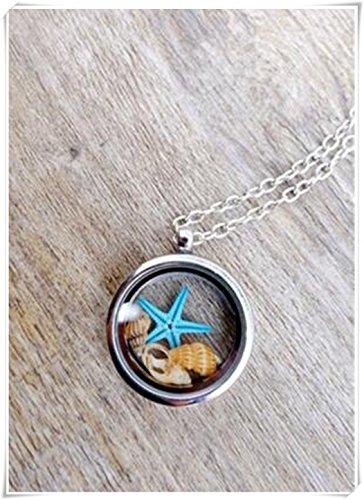 estrella-de-mar-collar-colgante-collar-de-concha-marina-terrario-collar