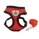 YooGer Hund Auto Harness Plus Verbindungsgurt, Einstellbare Mesh-Gewebe Hündchen Weste Hund Weste für Hunde Road Trip Tägliche Spaziergänge (Rot, M)