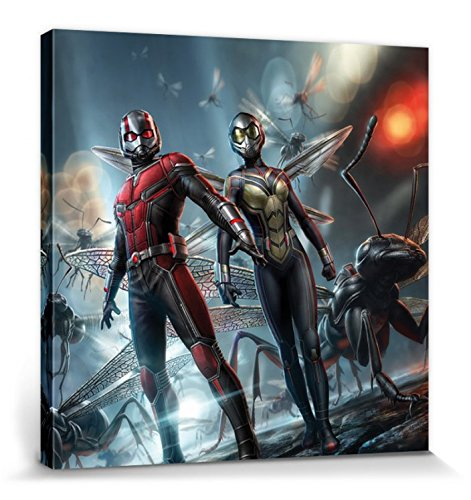 1art1 115488 Ant-Man and The Wasp – Paul Rudd, Evangeline Lilly Poster Leinwandbild auf Keilrahmen 40 x 40 cm