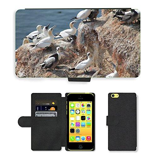 Just Mobile pour Hot Style Téléphone portable étui portefeuille en cuir PU avec fente pour carte//m00138507élevage Oiseaux Nature nidification Place//Apple iPhone 5C