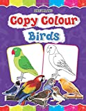 Copy Colour: Birds (Copy Colour Books)