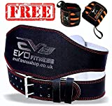 """EVO Fitness 4"""" Pure Leather Gym Belts Weightlifting Straps Back Support Wraps Bodybuilding (XL)"""