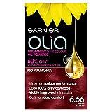 Garnier Olia Hair Colour 6.66 Vivid Garnet