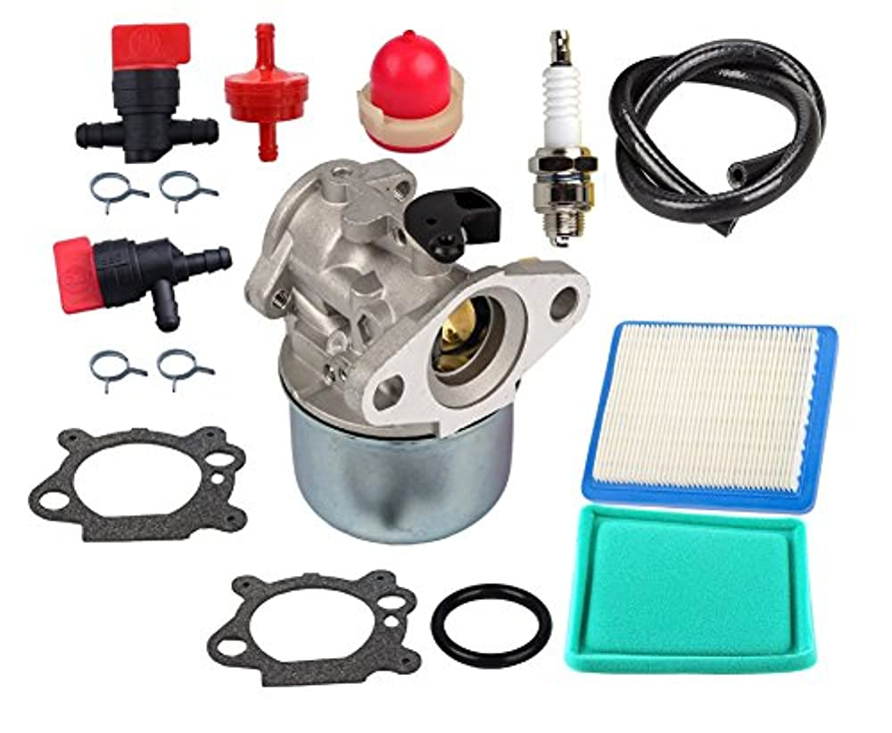 OuyFilters 799868 Carburetor Kit With 491588 Air Filter Primer Bulb Fuel Filter Shut Off Valve for Briggs /& Stratton 4 to 7HP Engines