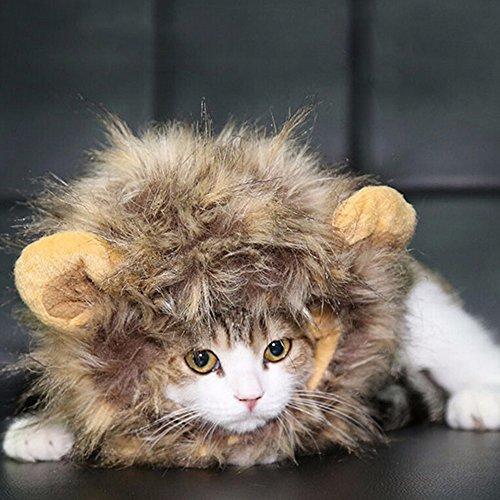 Haustier Kostüm Löwenmähne Cosplay für Hunde Katze Halloween Weihnachten Karneval mit Ohren (Halloween-kostüme Mit Einem Haustier)