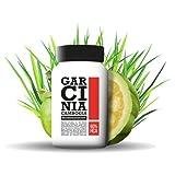 Garcinia Cambogia GC Extrakt VEGAN nutree® 60% HCA Testsieger Fatburner | 90 Kapseln
