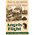 Angels Flight (The Trials of Kit Shannon #2)