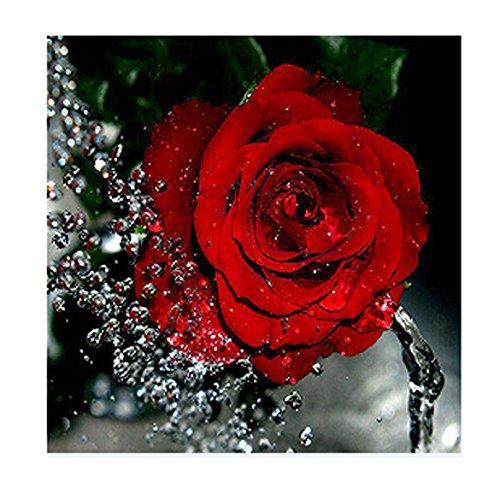 QIjinlook 5D Kreuzstich Kit, Schöne Blumen Muster Leinwand + Diamant Stickerei, Kunsthandwerk Für Home Wanddekoration 3D Aufkleber 30 * 30 cm (D) -
