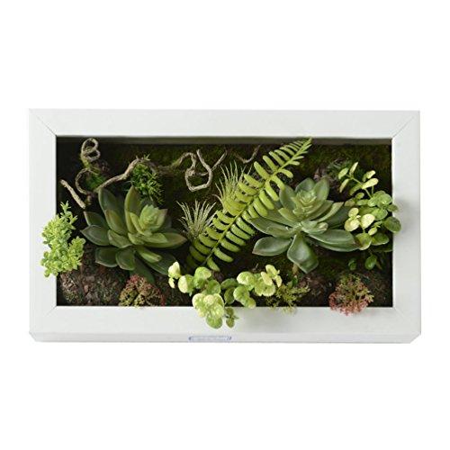 Vase artificiel en forme de cadre mural 3D - Balle, cactus, mousse sur pierre, feuilles vertes, fougères - Décoration de maison - 19,9 x 35 cm