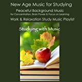 Studying with Music: New Age Music for Studying, Peaceful Background Music for Concentration, Brain Power & Focus On Learning, Work & Relaxation Study Music Playlist