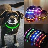 bureze LED aufladbar Nylon Hund Sicherheit Nacht, Halskette Hund Halsband