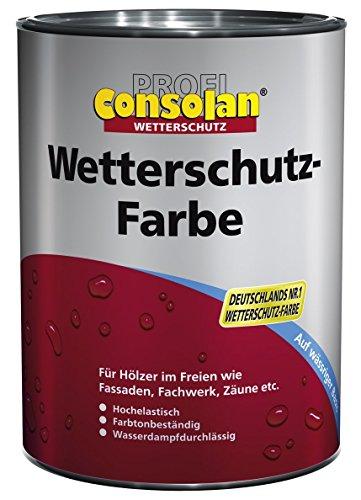 Consolan Profi Wetterschutzfarbe RM 220 moosgrün 2,5 Liter