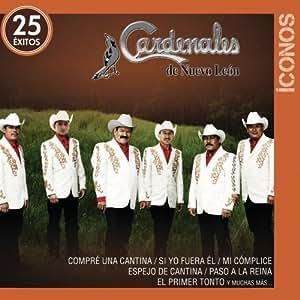 Iconos 25 Exitos [2 CD] by Fonovisa