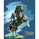 PYRAMID Cadre 3D Zelda breath of wild - Lenticulaire epona and link