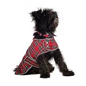 Boueux Paws Highland Écossais Manteau Rouge