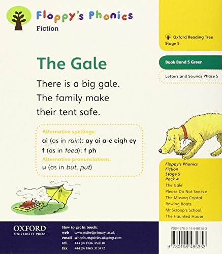 Oxford Reading Tree: Level 5: Floppy's Phonics Fiction: The Gale