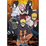 ABYstyle NARUTO SHIPPUDEN - Póster Groupe (98 x 68)
