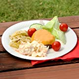 from drinkstuff Paper Plates 23cm - Pack of 100   9inch Paper Plates, Disposable Plates, Party Plates Model B000NP7PIW