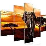 Bilder Afrika Elefant Wandbild 150 x 100 cm Vlies - Leinwand Bild XXL Format Wandbilder Wohnzimmer Wohnung Deko Kunstdrucke Orang 5 Teilig - MADE IN GERMANY - Fertig zum Aufhängen 001253a