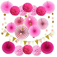 Zerodeco Party Decoration, 21 Pcs Hanging Paper Fans, Pom Poms Flowers, Garlands String Polka Dot and Triangle Bunting Flags