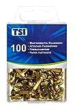 TSI Musterbeutelklammern, 100-er Packung