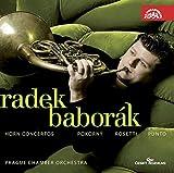 Radek Baborák,