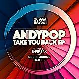 Take You Back (Underground Traffic Remix)
