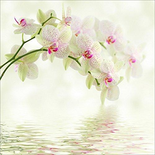 Art déco Stickers - Sticker boites aux lettres déco orchidée blanche 30x30cm - 1650