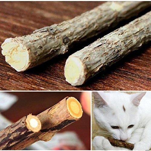 kangql 100CAT Zahnreinigung Stick reinen, natürlichen Katzenminze Kitty Molar Zahnpasta Ruten