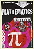Introducing Mathematics: A Graphic Guide by Sardar, Ziauddin, Ravetz, Jerry Published by Icon Books Ltd (2011)