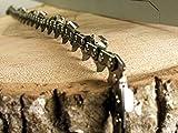 1 Sägekette Vollmeißel passend Stihl MS271-40cm 0.325' 67TG 1,6mm